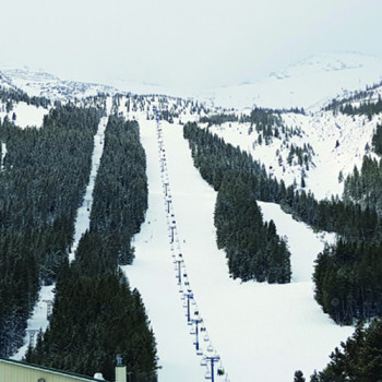 Castle Mountain ski resort is run by local ski enthusiasts.