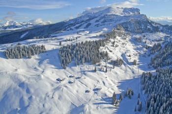 Das Skigebiet Steinplatte - Winklmoosalm eignet sich ideal für Familien und Genusscarver.