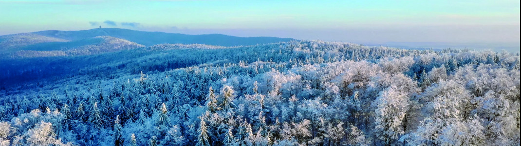 Ab zur Langlauf-Reise durch den Bayerischen Wald