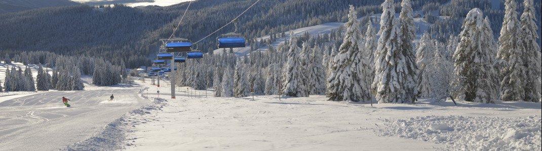 Neben 31 Schleppliften gibt es auch 5 Sesselbahnen und eine Gondel im Liftverbund Feldberg.