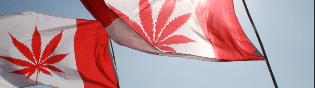 """""""Flagge zeigen"""" beim Vancouver Global Marijuana March 2015."""
