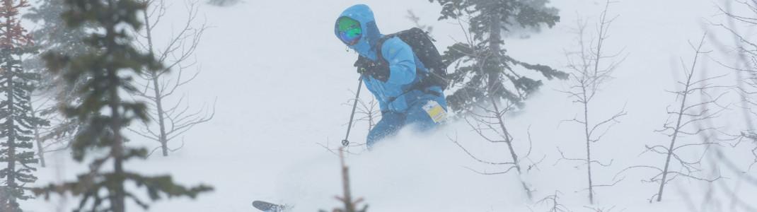 Die Nordamerikaner lieben Skifahren im Backcountry.