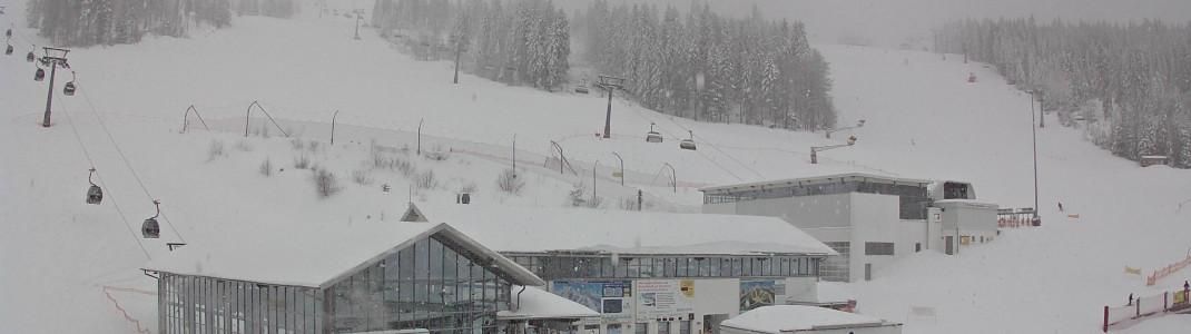 Seit Dienstag schneit es fast durchgehend am Arber im Bayerischen Wald. (Webcambild vom 19.1.)