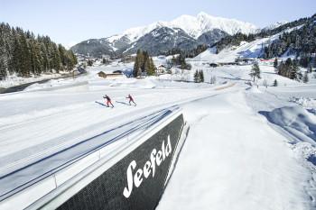 Die Nordische Ski WM 2019 findet in Seefeld und Innsbruck statt.