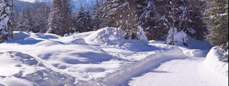Präparierte Wanderwege führen durch die verschneite Landschaft des Gasteinertals.