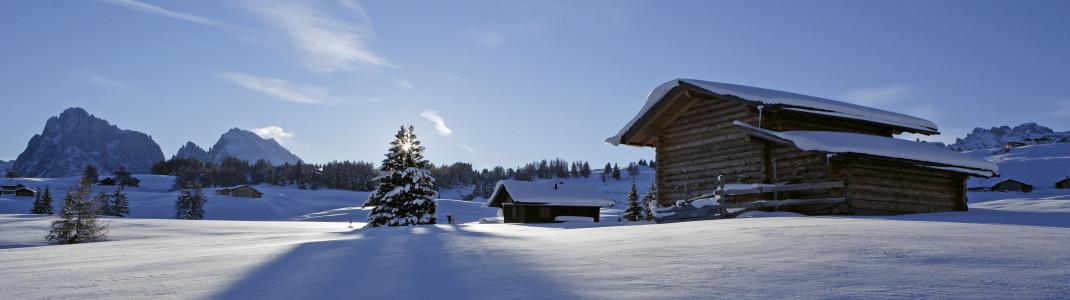 Südtirol und Genussurlaub gehören einfach zusammen