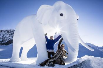 37 Elefanten brachte Hannibal mit über die Alpen.