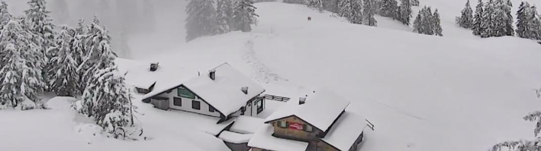 Bedingungen wie im Januar herrschen Mitte Mai auf der Zwieselalm bei Gosau.