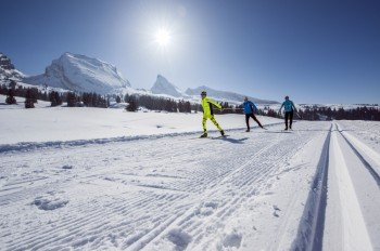 Viele Wintersportgebiete locken mit einem umfassenden Langlaufangebot.