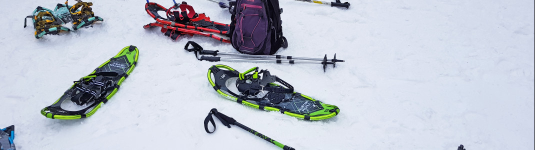 At Castle Mountain you can go snow-shoeing in the moonlight.