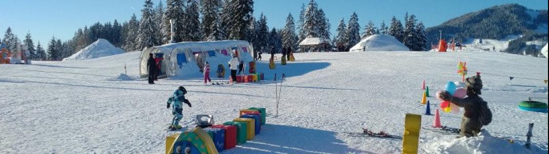 Highlight for kids: Wagrainis Winter World