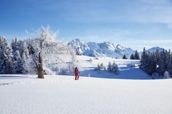 Attraktive Leistungen für einen tollen Winterurlaub in Innsbruck bekommst du auch mit der Welcome Card!