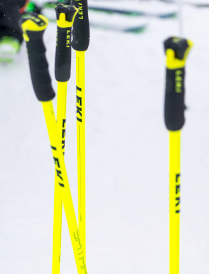There are all kinds of ski poles in different price ranges available.