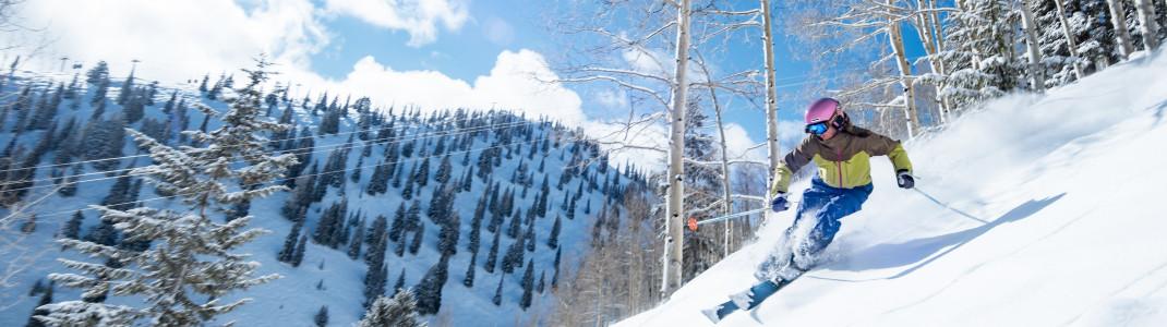 Tree Skiing am Aspen Mountain ist ein ganz besonderes Erlebnis.
