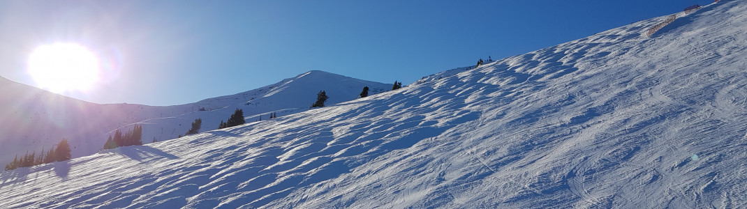 A mogul run with small and medium-sized bumps.