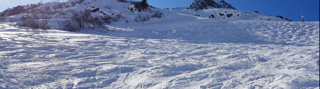 An example of a relatively easy mogul run.