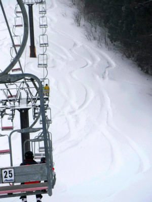 Lift passes in major resorts charging between 4000 and 5000 Yen.
