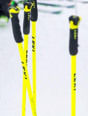 Es gibt viele Skistock-Arten in den unterschiedlichsten Preisklassen.