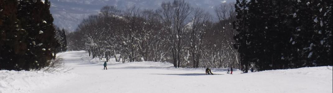 Zu den wenig besuchten Skigebieten in Japan gehören die Pisten in Myoko Kogen.