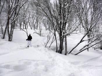 Freeride-Ski sind bei den vielen Möglichkeiten abseits der Piste eigentlich ein Muss.