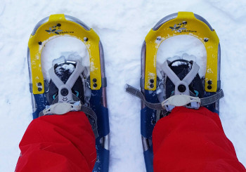 For snowshoeing you need waterproof shoes with a solid sole.