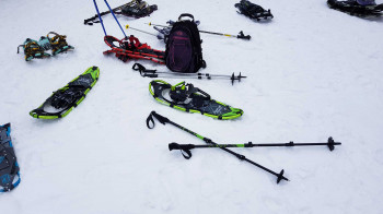 Telescopic poles are perfect for snowshoeing.
