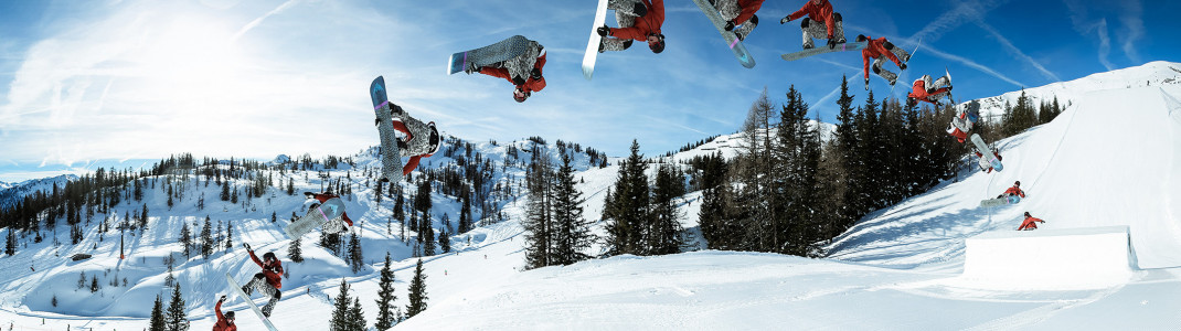 Jib, straight jump or rainbow - find out more about the most common elements in a terrain park.
