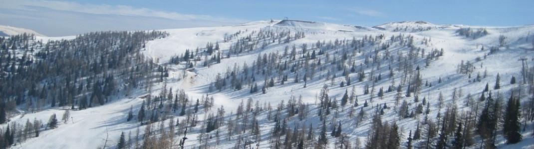 Blick auf das Gebiet um Muldenlift und Hirschsprunglift