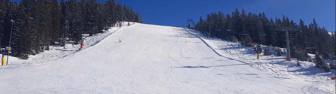 Eine von zwei schwarzen Pisten im Skigebiet See.