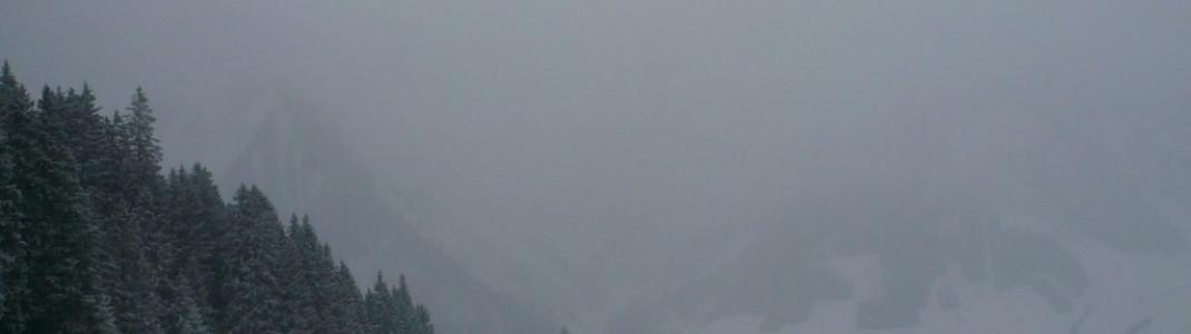 Blick von der Hochalm (1610 m)