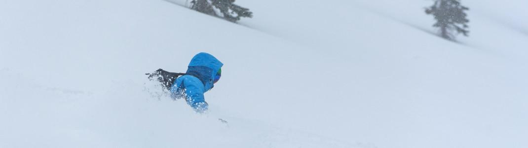 """Ein unvergessliches Erlebnis: Tiefschnee fahren beim """"Cat Skiing"""" am Mount Haig"""