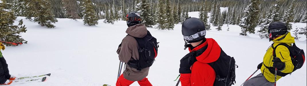 Fortgeschrittene Skifahrer haben in Castle Mountain sicher viel Spaß!