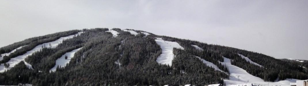 """Blick von der """"Free Parking Area"""" auf die relativ einfachen Pisten oberhalb von Copper Mountain Center Village!"""