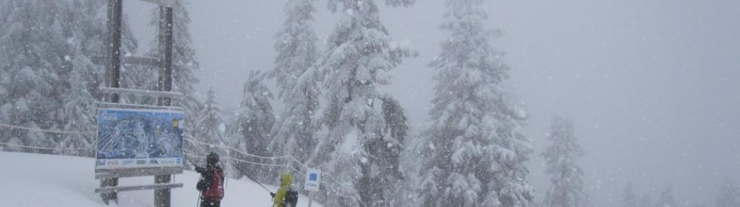 Bergstation der 4er-Sessellifts Eagle Express (1200m)!