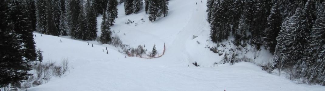 Buckelpiste 3 (Skiroute 3) von der Abfahrt 14 abzweigend!