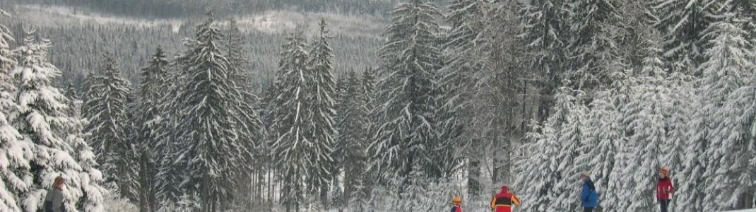 Der Geißkopf liegt in der Breitenau