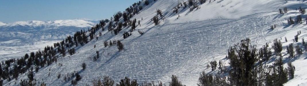 Blick auf Milky Way Bowl! Hier finden sich die meisten Tiefschneeabfahrten im Skigebiet.