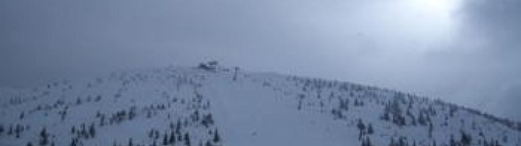 Blick auf Häsing- Steilhang Nr. 5a