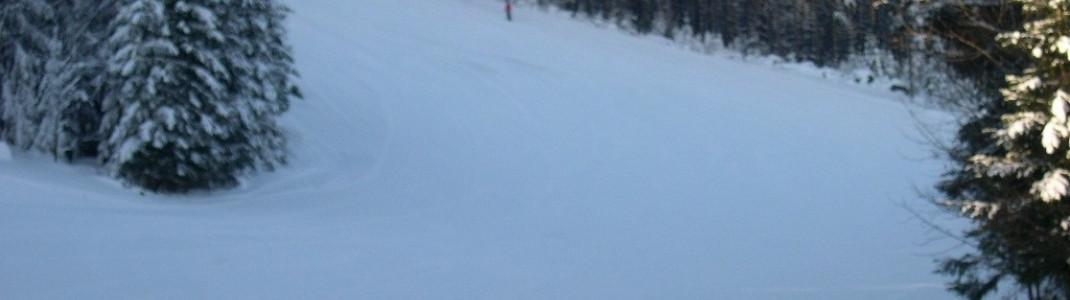 Die Skipisten führen an Waldabschnitten entlang