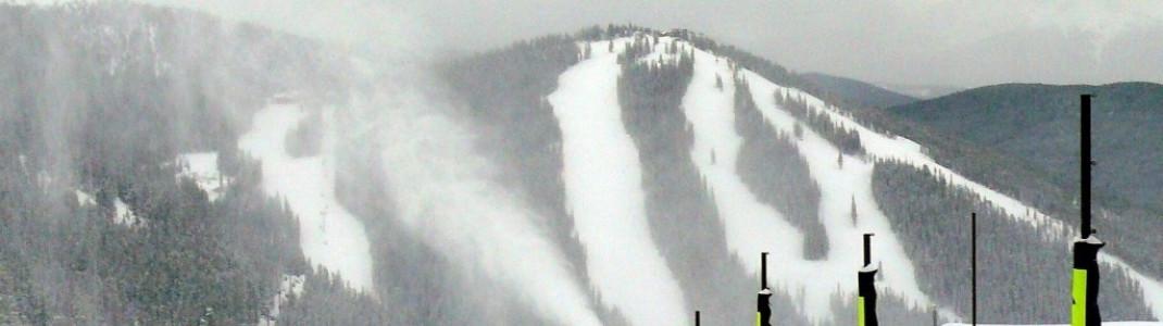 Scout-Abfahrt mit Sicht auf den North Peak (3554 m)!