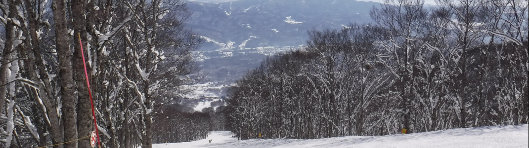 Auf Skianfänger warten zahlreiche flache Pisten