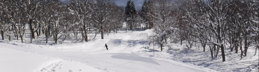 In Myoko Kogen gibt es mehrere Snowparks.