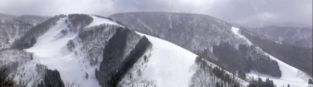 Aussicht Richtung Ski Line Abfahrt