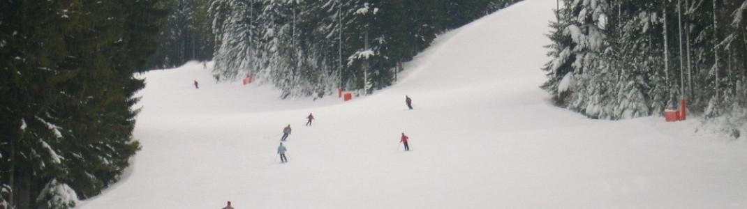 Die durchschnittliche Schneehöhe während der Saison beträgt 19cm am Berg