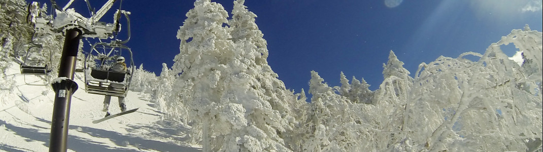 """Die sogenannten """"Schneemonster"""" (verschneite Bäume) am Mt. Yokote."""