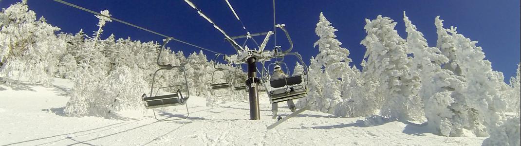 """Auf dem Mt Yokote findet man die typischen """"Schneemonster"""", eingeschneite Bäume."""