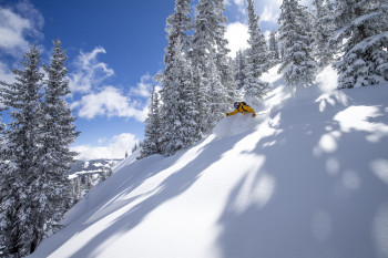 Aspen has beautiful powder runs on each of its four different mountains.