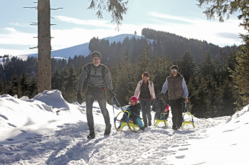 Genieße Natur pur und tolle Aussicht auf dem Blomberg.