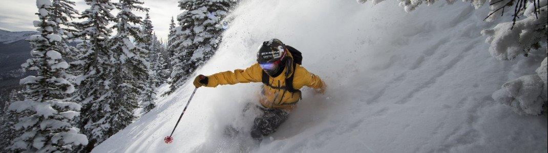 Treeskiing und Off-pist Skiing sind in Aspen Mountain ein großartiges Erlebnis.