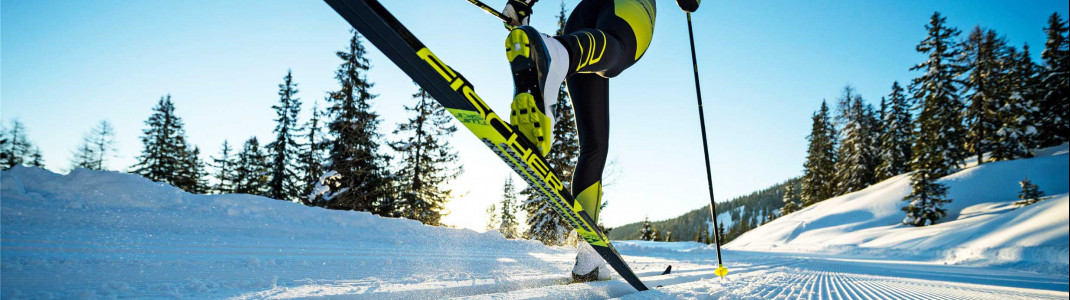 There are different cross-country skis in different price ranges.